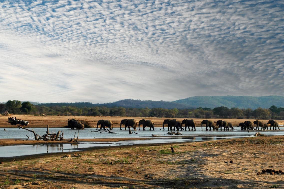 Zambia South Luangwa Kafunta Safari