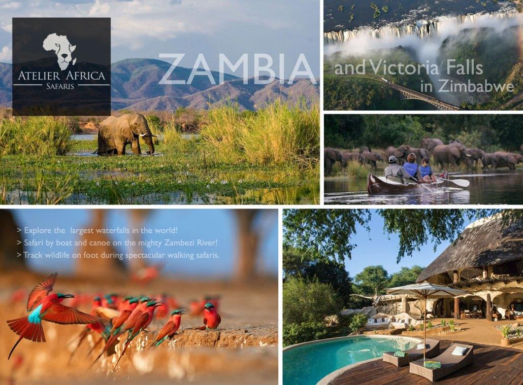 Zambia Sample Safari