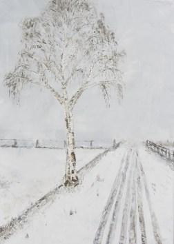 Birke-im-Winter 1