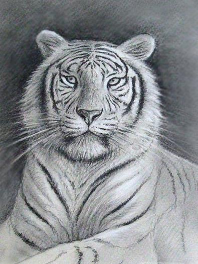 Tiermalerei Tierportraits Tiergemlde Tiermaler
