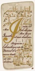 Caligraphie Texte de Mohammed Dib (12)