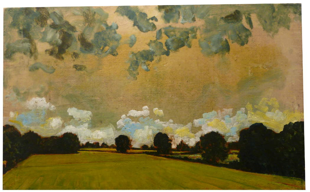 Harry Adams Grey Clouds Over Wild Meadow And Pasture
