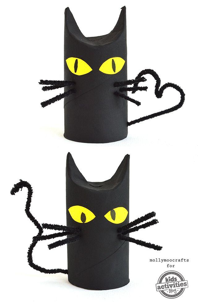 chat rouleau papier toilette
