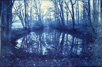 Cyanotype photo