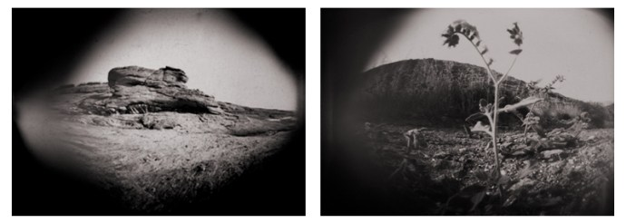 Pinhole Samples