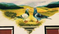 Tauben Wandmalerei ( DTauben Wandmalerei (Das abgebildete Foto ist leider in schlechter Qlalität.)