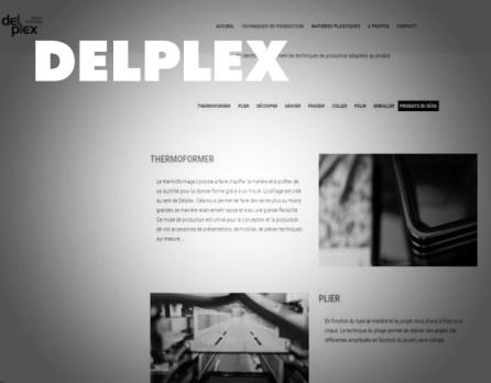 www.delplex.be