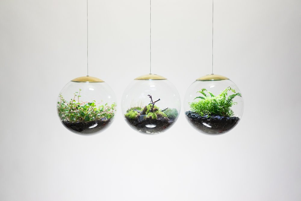 decoracion terrarium2 1