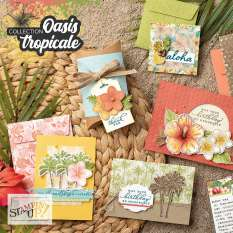 Collection Oasis tropicale