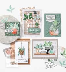 Collection Plantes épanouies 2021