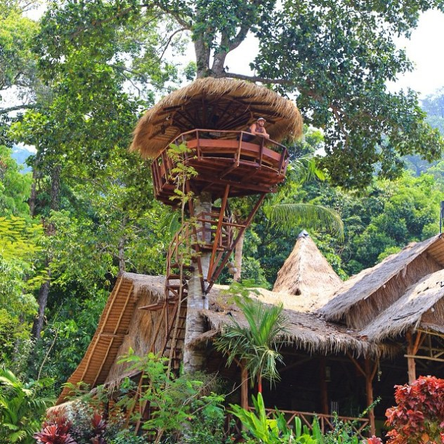 We-have-arrived-in-KohChang-Thailand-to-find-a-tree-house-high-above-with-ocean-views.-Its-not-a-bad