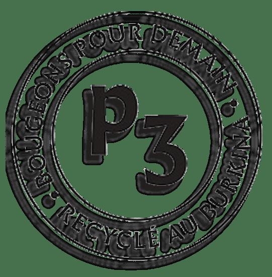 P^3-logo-trans-1
