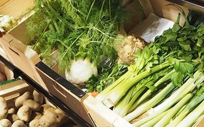 Empoderem la Sobirania Alimentària a la Comarca del Vallès Occidental