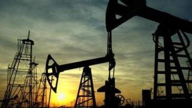 """صورة مسؤول في """"النفط والغاز"""": حقل مبروك يُنتِج و4 مناطق امتياز مطروحة للتقييم"""