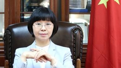 Photo of سفيرة الصين في تصريح جديد: نحن شركاء تجاريون للسلطنة لسنوات عديدة