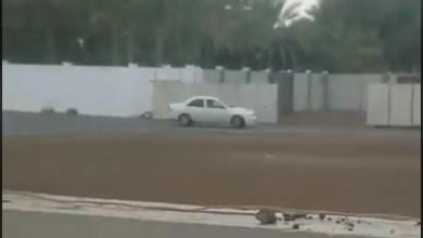Photo of استعرضا بتهور في أحياء سكنية والشرطة تضبطهما