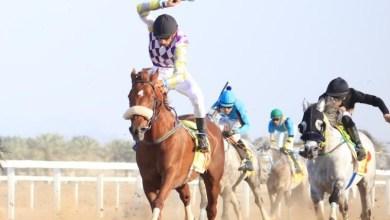 """Photo of """"فتاح دي لوب"""" يُتوج بكأس سباق السرعة.. ومالكه يوضح أهم مشاركاته المقبلة"""