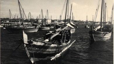 Photo of باحث يكشف معلومات مهمة عن الرحلات البحرية العُمانية إلى الصين