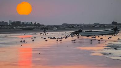 Photo of 7 جزر ومقومات سياحية: تعرّف على قرية السوادي
