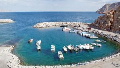 Photo of تدشين خدمة جديدة في ميناء ليما للصيد البحري