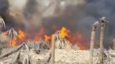 """Photo of لليوم الثالث: """"الدفاع المدني"""" تواصل التعامل مع حريق في ضنك"""