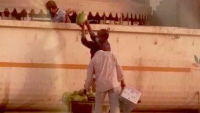 Photo of القبض على وافدين يأخذون الفاكهة من النفايات