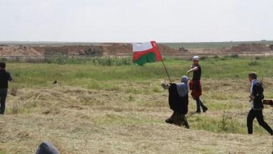 صورة الدكتور محمد العريمي: السلطنة لن تتخذ قرارات تضر بالفلسطينيين