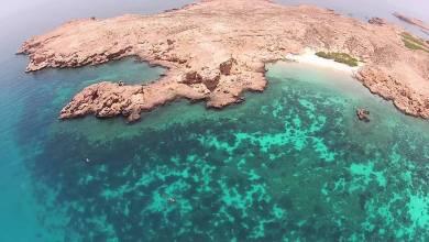 صورة المبيت في جزر الديمانيات مسموح