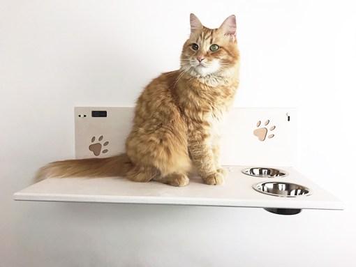 Mensola per gatti con ciotole e incisioni