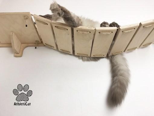 Ponte per gatti con zampine