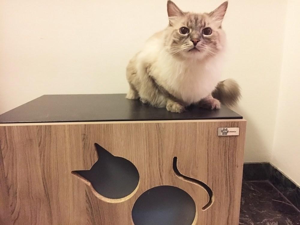 Mobiletto copri lettiera per gatti-foto9