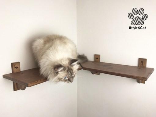 Mensola angolare per gatti