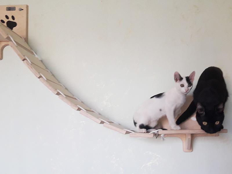 Ponte per gatti intagliato