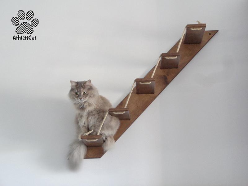 Scaletta per gatti in legno con Masha