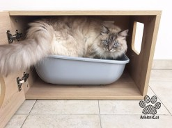 Mobiletti lettiera gatti