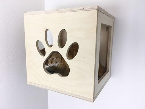 cubo per gatti