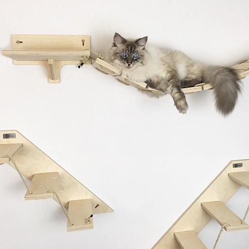 arredo per gatti