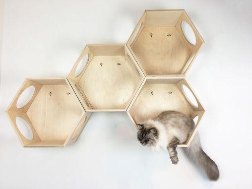 Esagoni cucce per gatti