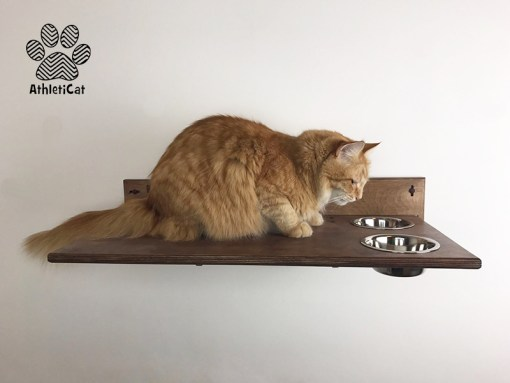 Cat shelf with bowls