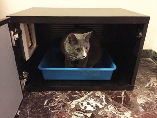 Litter Box Hider