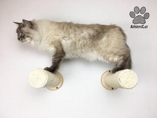 Wall cat scratcher