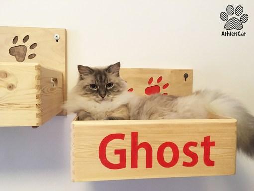 Wooden cat box athleticat