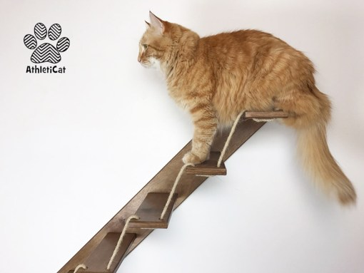 Wooden cat ladder