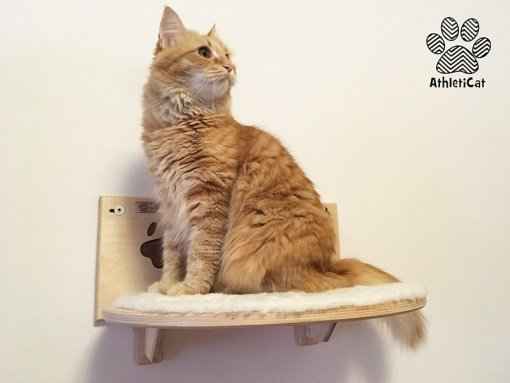 Wooden cat shelf with carved paws