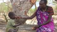 Επείγουσα Έκκληση της ActionAid: «Η ξηρασία σκοτώνει στην Ανατολική Αφρική»