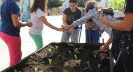 Συνεχίζεται το κοινωνικό πρόγραμμα «Cretan Kings Assist»…