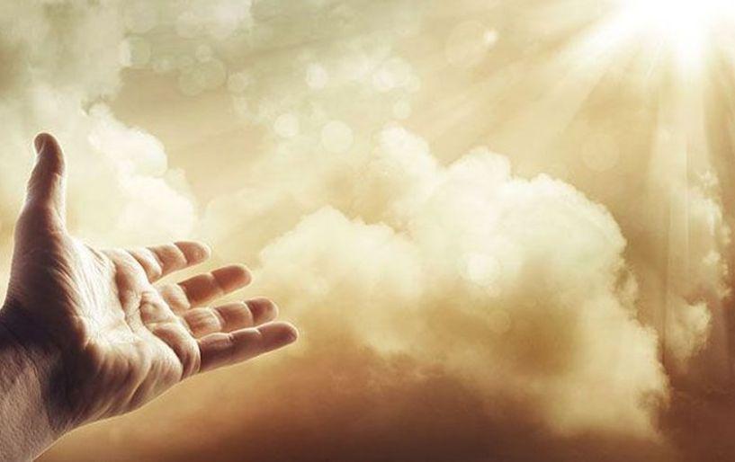 «Δεν υπάρχει Θεός»,είπε το μυρμήγκι και άλλαξε κουβέντα [videos]