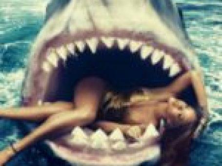 Συμβουλές επιβίωσης σε επίθεση καρχαρία