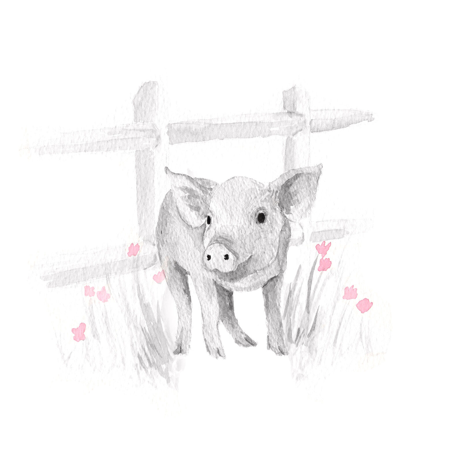 Framed Art Pig Sketch With Pink 11x14 In At Home