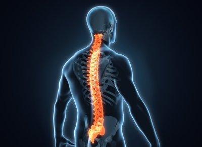 Image d'une colonne vertébrale représentée en 3D - Athomic Wellness